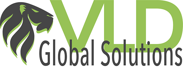 VLD Global Solutions